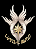 littlewing_logo.png